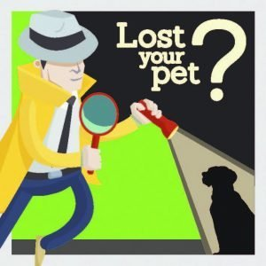 Dog Pet Detective
